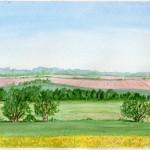 Landscape2010