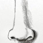hlmnk_nose6