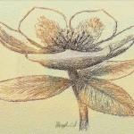 hlnk_floral