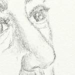 hlnk_nose4