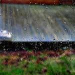 hlnk_rain