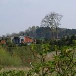 hlnk_springland11