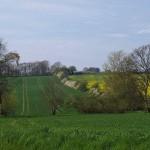 hlnk_springland2