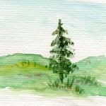 landskab
